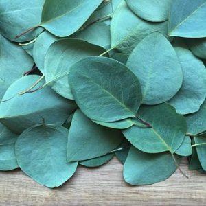 body care wellness, evoke aromatherapy, pure essential oils
