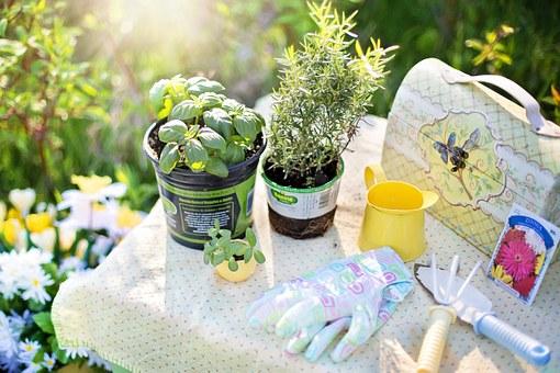 evoke aromatherapy, essential oils, garden herbs, planting